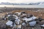 210912a_Raudfjordhytta_030_E