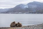 210715_Longyearbyen_18_E