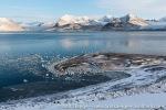 b1i_St-Jonsfjord_20Sept14_178_E