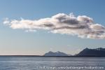 a6f_isfjord_30juni15_15