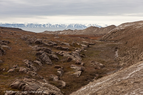 Barentsøya