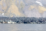 160622c_jan-mayen-nord_08