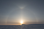 a8_Mohnbukta_07April14_298