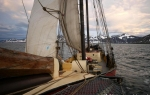 b1_Woodfjord_15Sept08_18
