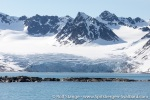 190630a_Magdalenefjord_56