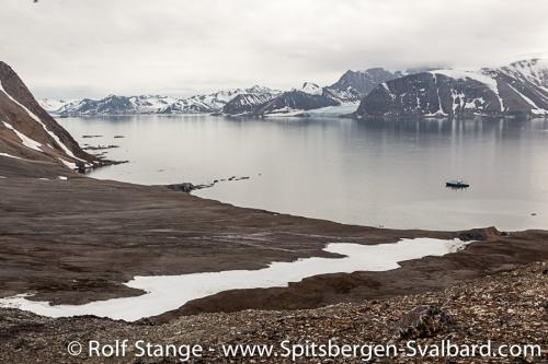 Isbjørnhamna<br />Hansbreen