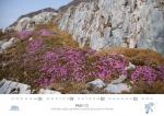 rz-spitzbergen-kalender-2017-a5-06