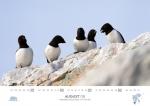 rz-spitzbergen-kalender-2017-a5-09