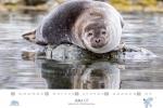 spitzbergen-kalender-2018-a3-08