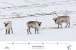 spitzbergen-kalender-2018-a3-12