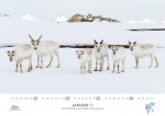 rz-spitzbergen-kalender-2019-a3-02