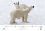 rz-spitzbergen-kalender-2019-a3-04